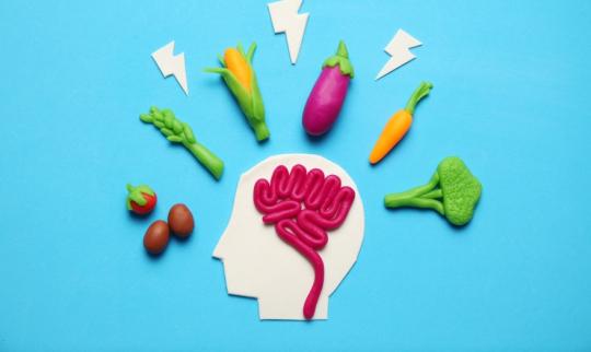 Top 5 Memory Supplements 2020